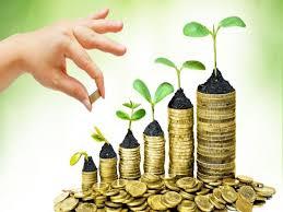 انواع روش های افزایش سرمایه