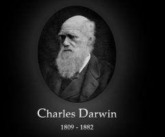 چارز داروین